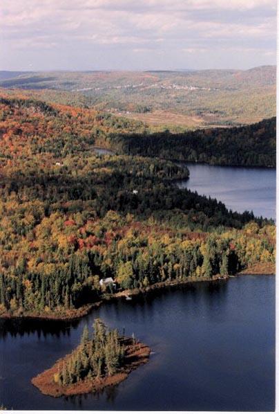 Forêt d'automne - Zec Lavigne