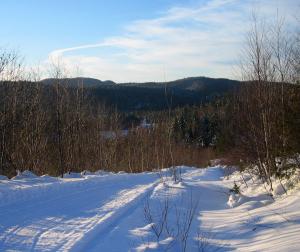 La ZEC en hiver